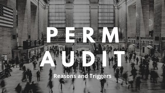 PERM Audit Reasons and Triggers 2020
